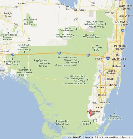 Florida Everglades National Park World Easy Guides