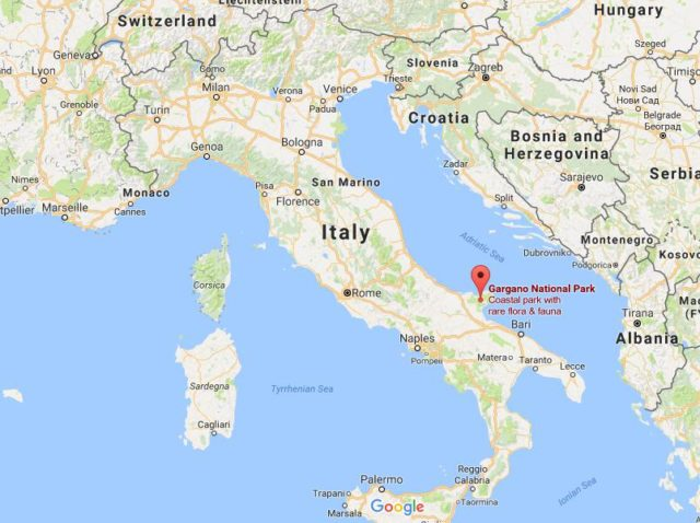 cuba location on map with Gargano National Park on Where Is Oludeniz On Map Turkey additionally Metropolitan Museum Of Art On Map Of Nyc also Gargano National Park furthermore Where Is Galicia On Map Spain also Where Is Niort On Map France.