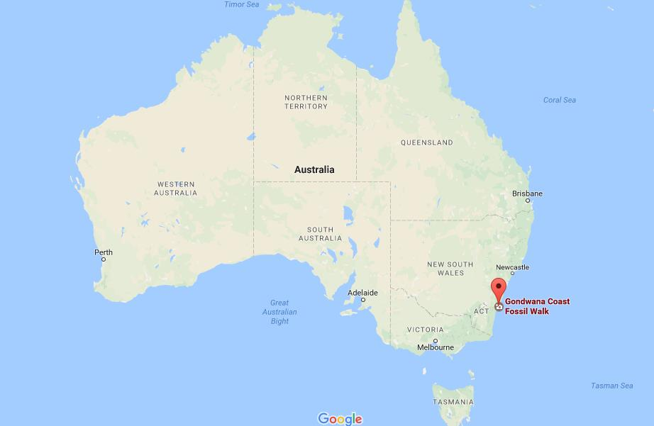 where is central eastern rainforest on map australia