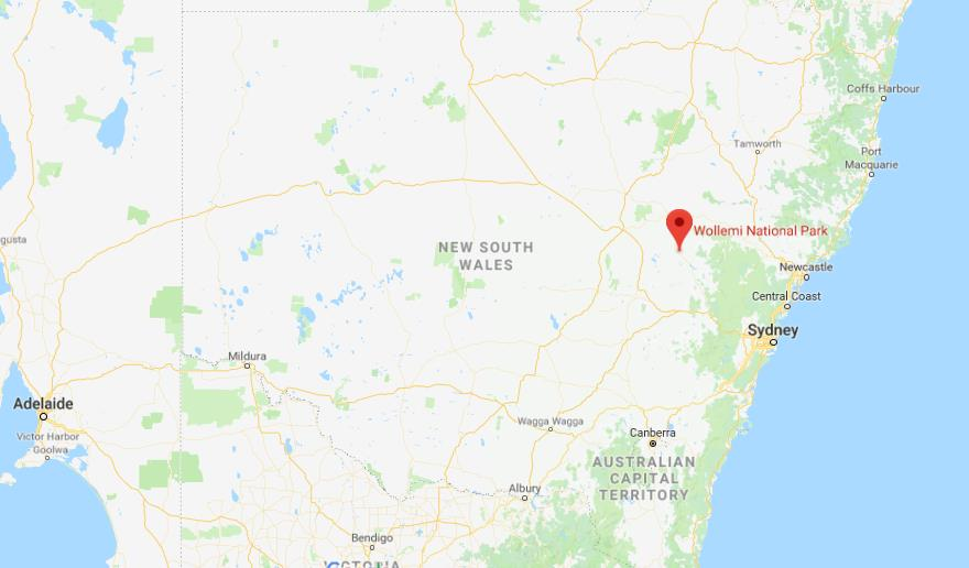 Where is Wollemi National Park on map of New South Wales